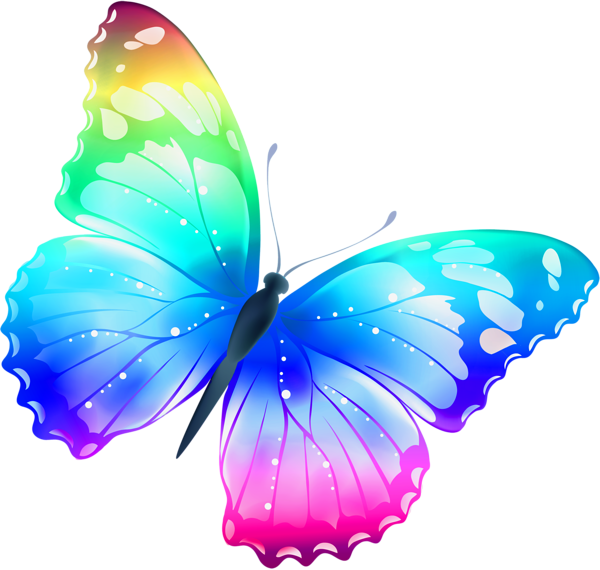 butterfly_PNG1041.png