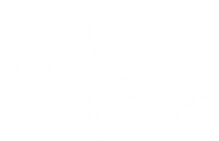 cupe 831.png