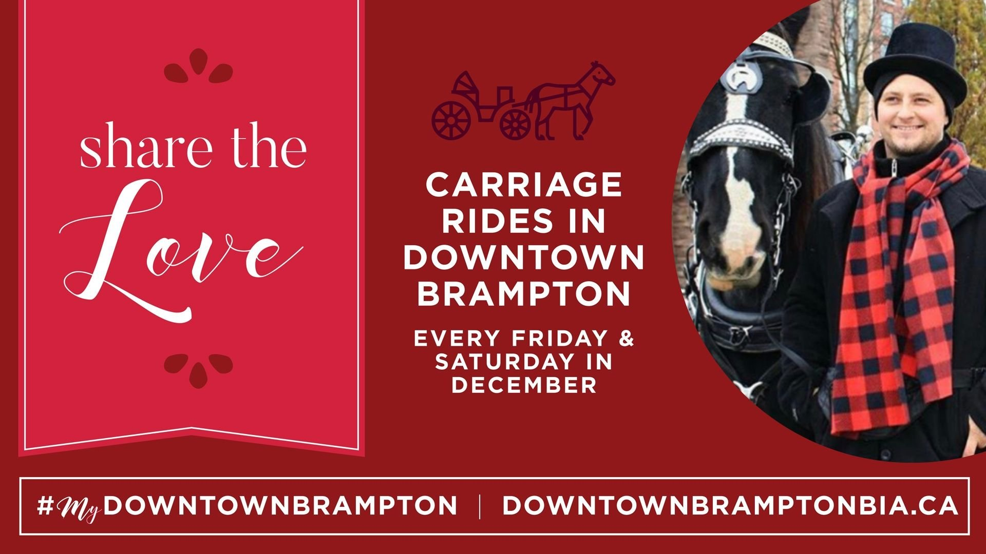 Carriage Ride Ad Banner